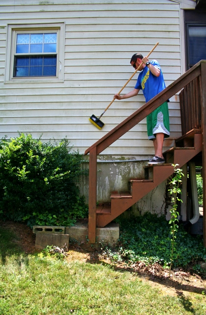 Mold Busters Or How To Clean Vinyl Siding