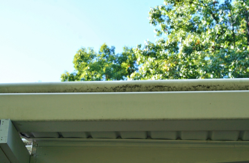 How To Clean Moldy Gutters And Bricks