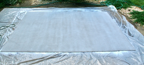 painting-a-rug-white-4