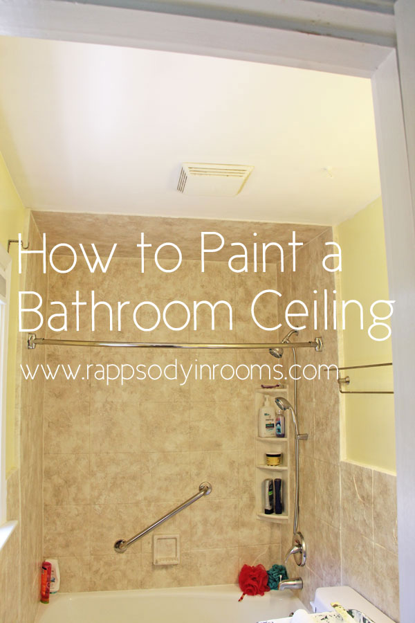 painting a bathroom ceiling w empowerment