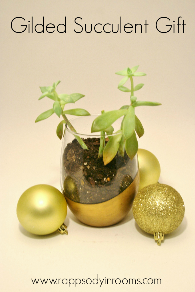 Gilded Succulent Gifts